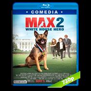 Max 2: Héroe de la Casa Blanca (2017) BRRip 720p Audio Dual Latino-Ingles