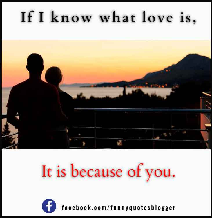 If I know what love is, it is because of you. – Herman Hesse