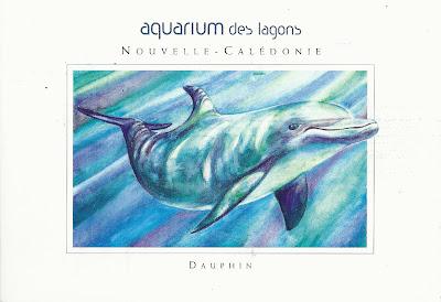 Lagoons aquarium New Caledonia
