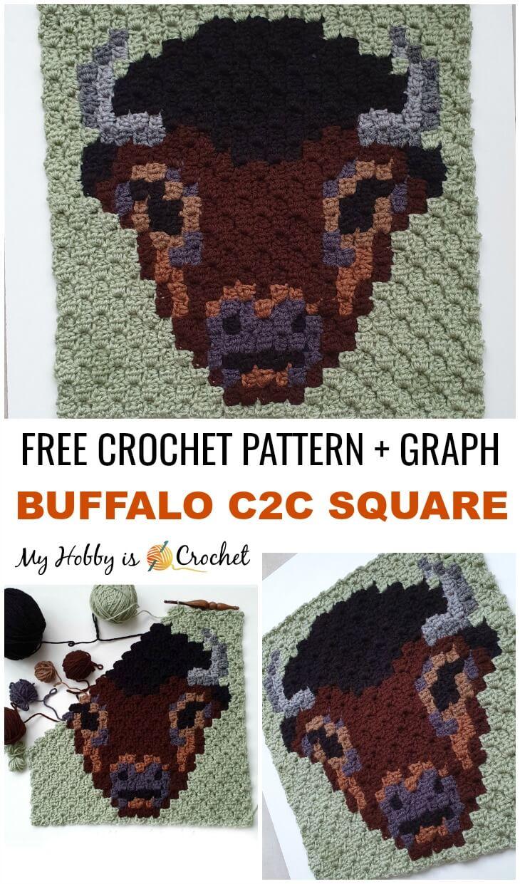 Buffalo C2C Square - Free Pattern + Graph