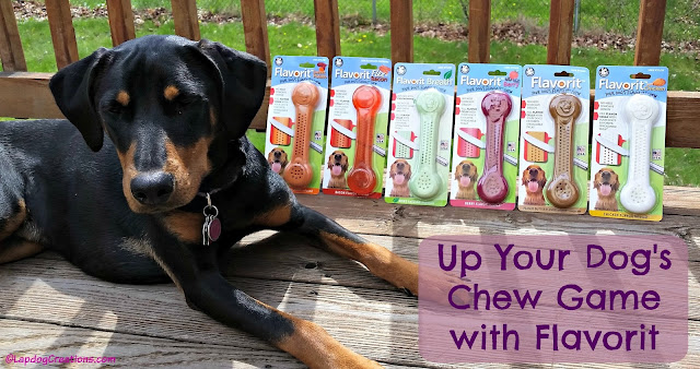 Up Your Dog's Chew Game with Flavorit chews from Pet Qwerks #dogchew #Flavorit #LapdogCreations ©LapdogCreations