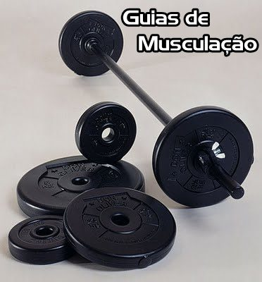 guiamuscula%25C3%25A7%25C3%25A3o Download   Guias de Musculação