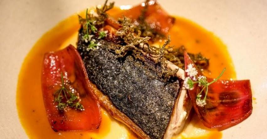 Comer pescado después de una operación no causa infección