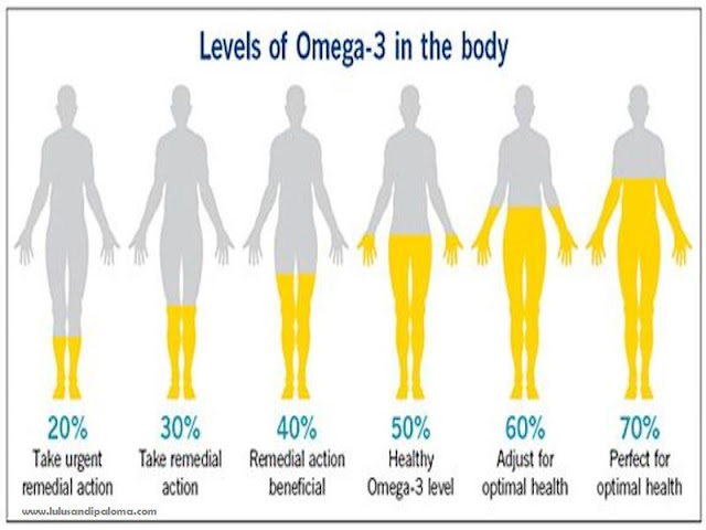 manfaat-omega-3