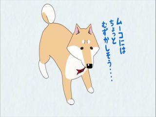 Itoshi no Muco - Episódio 12