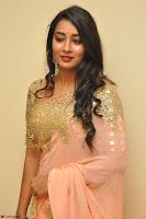 Bhanu Shri looks stunning in Beig Saree choli at Kalamandir Foundation 7th anniversary Celebrations ~  Actress Galleries 032.JPG