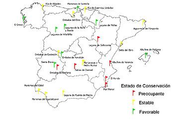Image result for contaminación de lagos y otros humedales ejemplos en españa