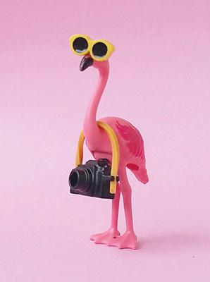 http://www.shabby-style.de/flamingo-klappkarte-kamera