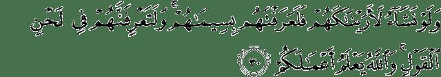 Surat Muhammad ayat 30