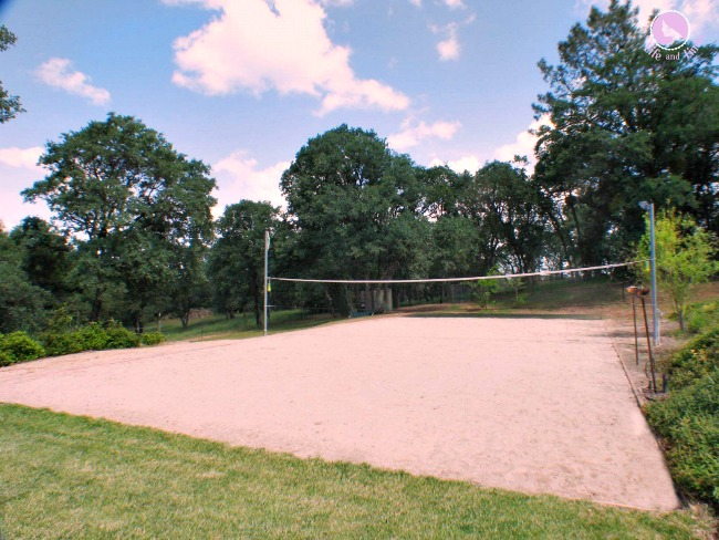 Our yard complete with a sand volleyball court.