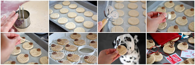 Step-by-step making Christmas dog treats shaped like patterned tree ornaments