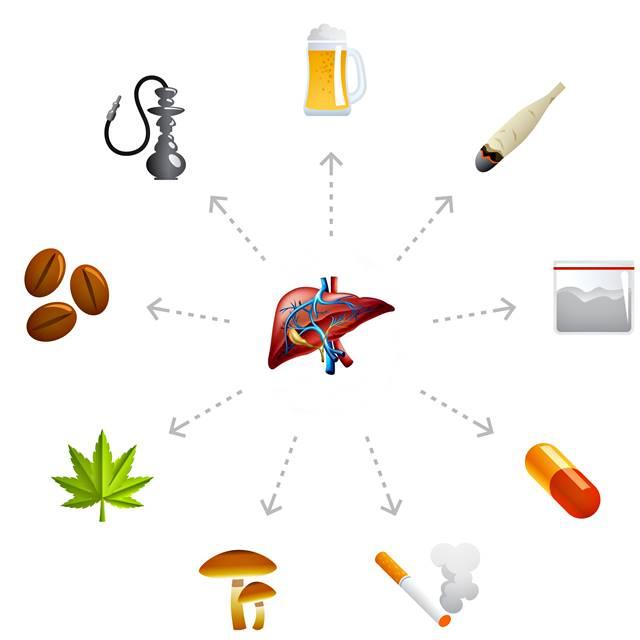Todo lo que afecta la salude del hígado incluyendo los medicamentos