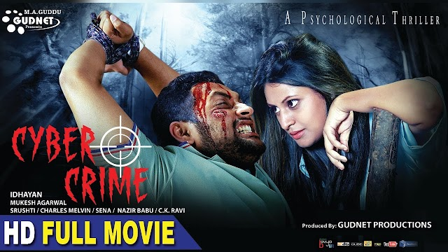 Cyber Crime 2016 Hindi WEB HDRip 350mb