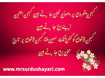 Beautiful Urdu Shayari images
