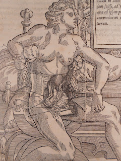 Woodcut showing female anatomy with clear marking of inserted woodblock