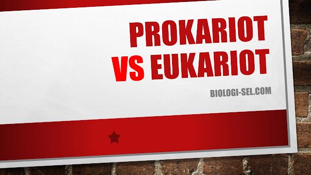 Perbedaan utama sel prokariotik dan sel eukariotik adalah dari membran intinya