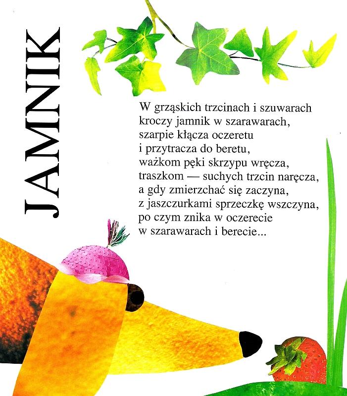 Eduszka Blog Twórczo Humorystyczny Jamnik Małgorzata