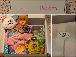 contents of the sassybloom subscription box as described above