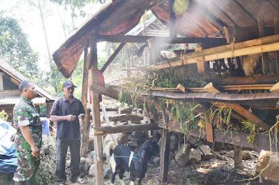 Kambing Jadi Komoditas Andalan Desa Jembul, Lokasi TMMD Ke-102