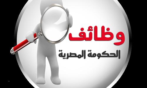 الوسيط وظائف خالية اليوم في الحكومة المصرية 2016 وظائف شاغرة شهر نوفمبر 2016 أهم الشروط والمؤهل