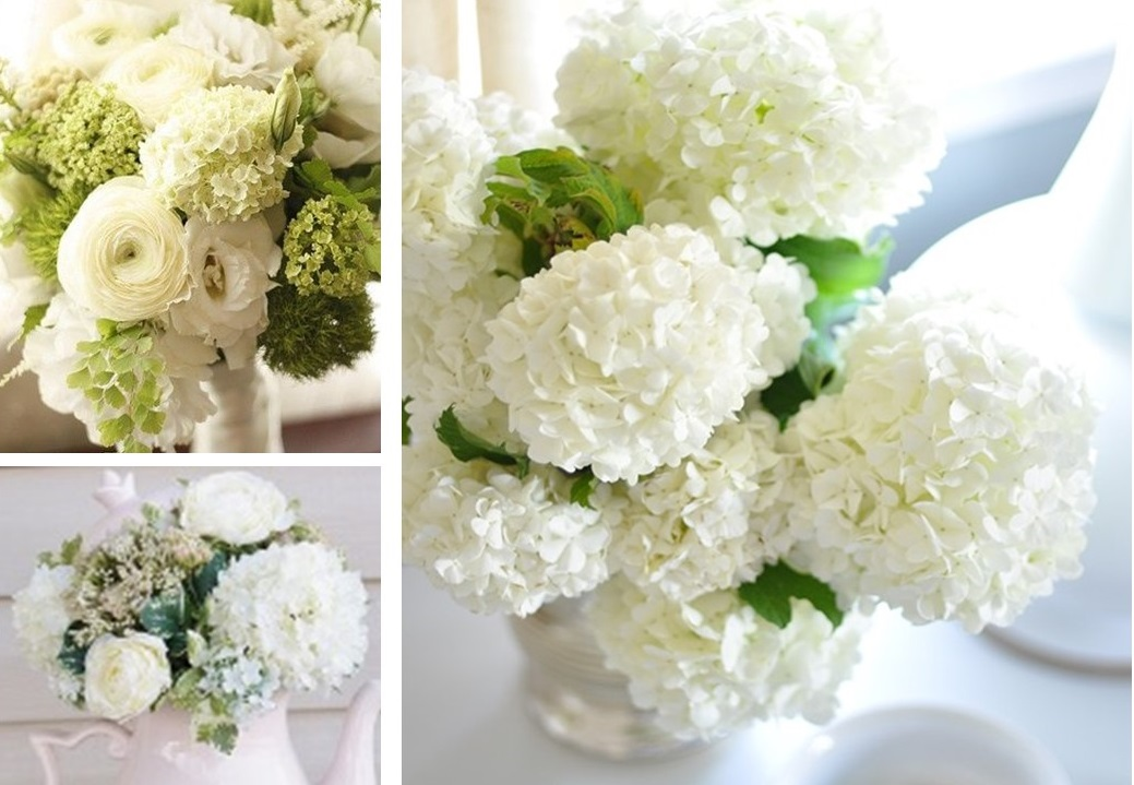 Viburnum spring snowballs flower talk white viburnum snowballs bridal arrangements mightylinksfo
