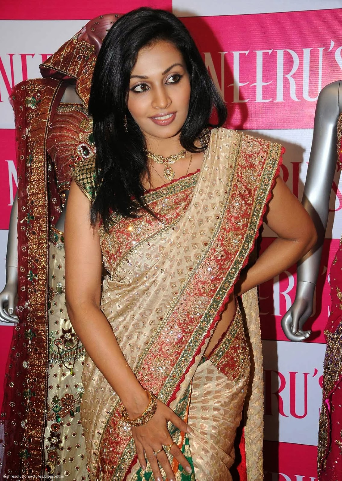 Asha Saini Hot Stills ~ High Resolution Pictures