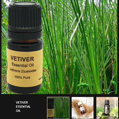 Vetiver Essential Oil for Diabetics