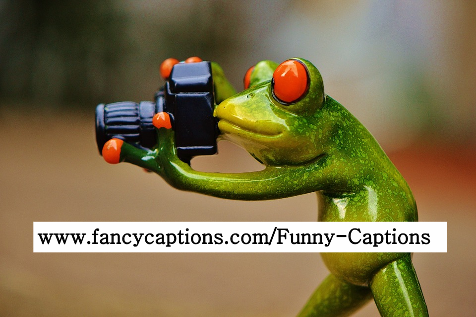 Funny Captions