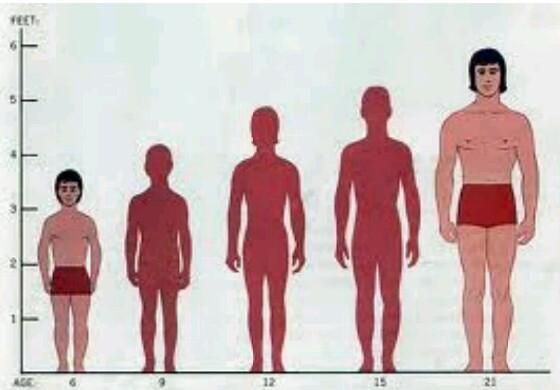 Image result for अगर लंबाई बढानी है