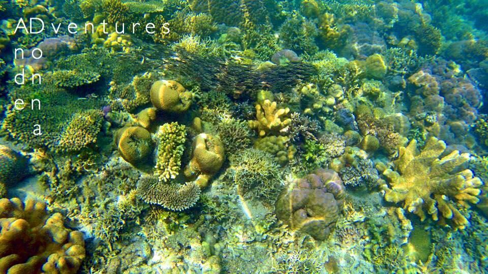Hidden Lagoon Coron Palawan