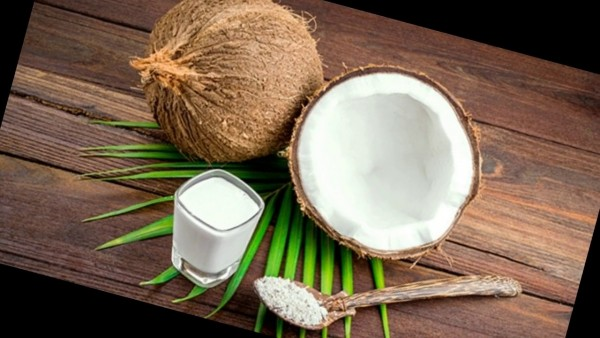 Santan Coconut Milk
