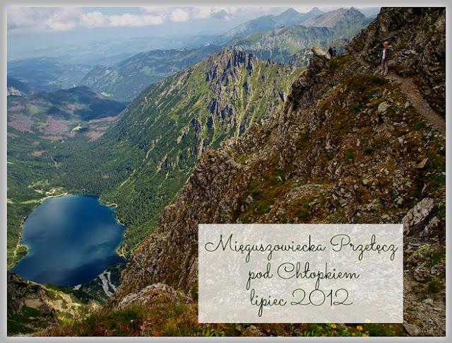 http://www.rudazwyboru.pl/2013/11/mppch.html