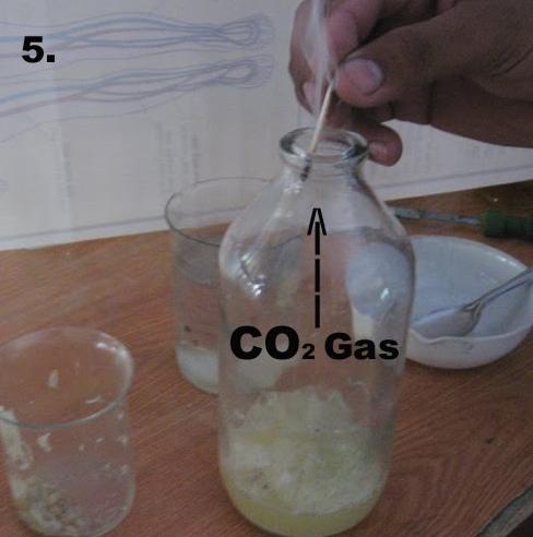 Carbon Dioxide Gas Ka Formula
