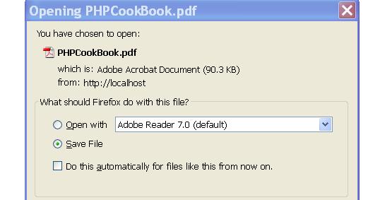 Using codeigniter file pdf