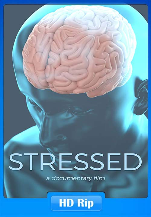 Stressed 2019 720p WEBRip x264   480p 300MB   100MB HEVC Poster