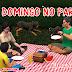 Capítulo 22 - Domingo no Parque