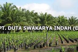 Lowongan Kerja PT. Duta Swakarya Indah Pekanbaru Mei 2019