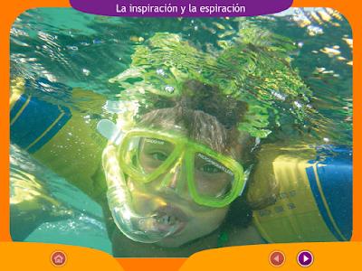 http://ceiploreto.es/sugerencias/juegos_educativos_6/1/2_Inspiracion_espiracion/index.html