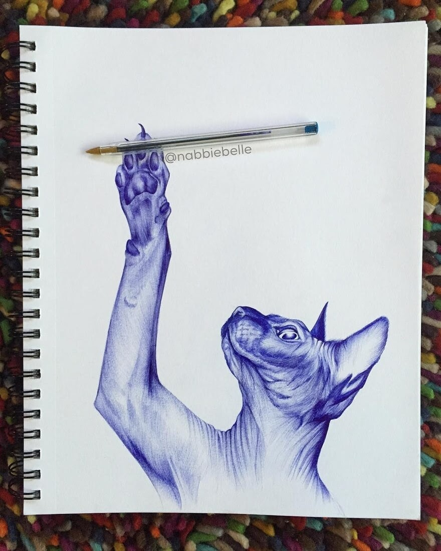 02-Sphynx-Cat-Annabelle-Marie-Inked-Animals-Drawn-in-Ballpoint-Pen-www-designstack-co