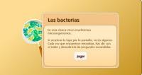 http://www.primaria.librosvivos.net/Las_bacterias_7.html
