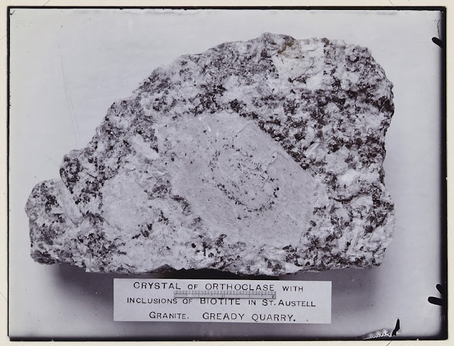 Crystals of orthoclase with inclusions of biotite