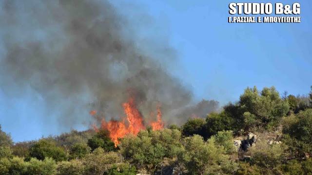 Πυρκαγιά στο Καρατζά Αργολίδας
