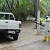 SAÚDE / Primeiro caso de febre amarela em macaco é identificado em Paulo Afonso