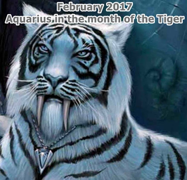 February 2017 Aquarius in the month of the Tiger