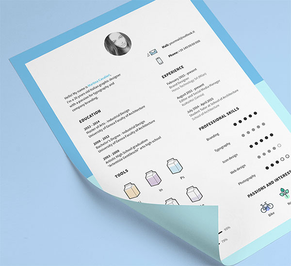 CV Template and Icons Free