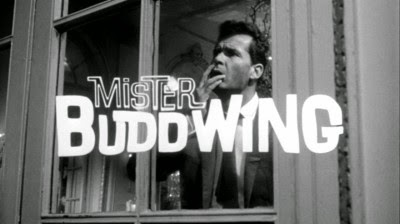 James Garner Mister Buddwing movieloversreviews.filminspector.com