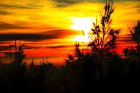 http://www.wisatabromo.my.id/2015/10/paket-wisata-bromo-sunrise-12-jam.html