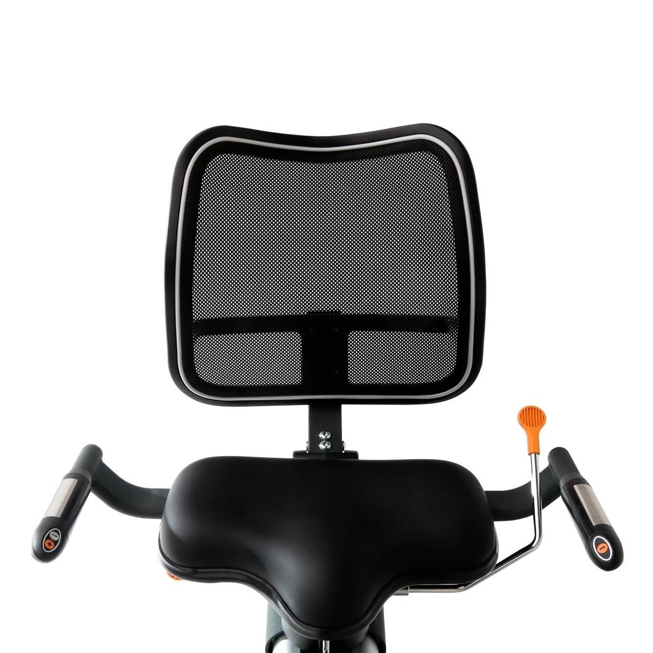 Exercise Bike Zone: 3G Cardio Elite RB Recumbent Exercise