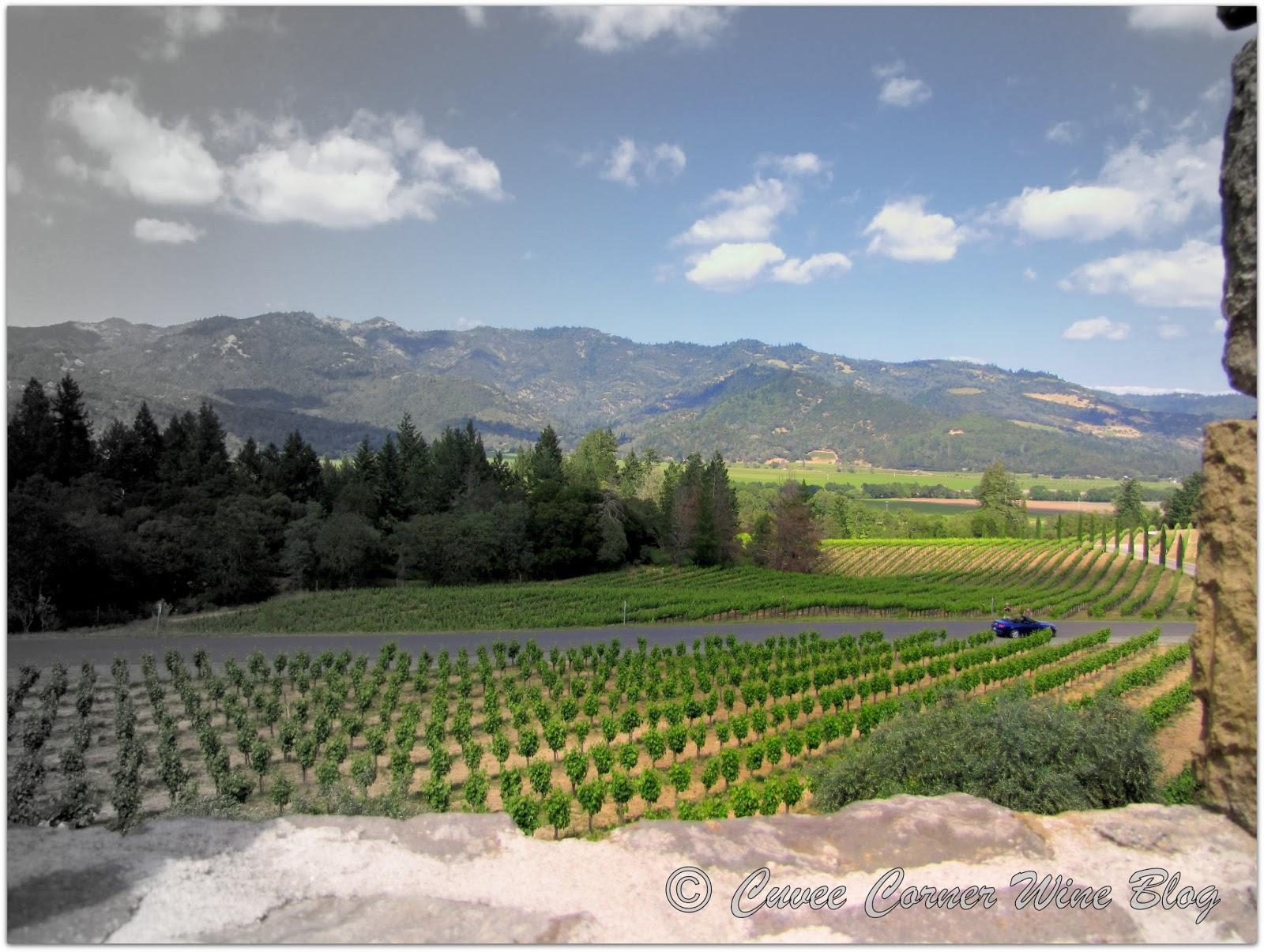 Wine of the Week: 2013 Bien Nacido Vineyard Chardonnay, Castello ...