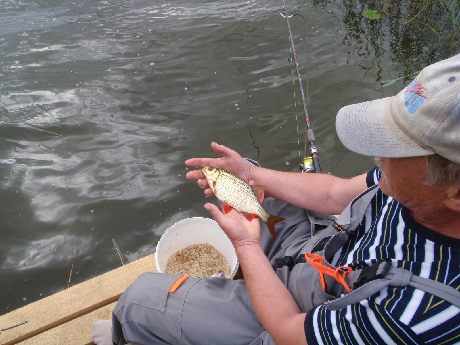 Рубрика: Рыбалка в мае